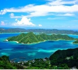 祝 世界遺産登録 奄美大島、徳之島、沖縄島北部及び西表島①
